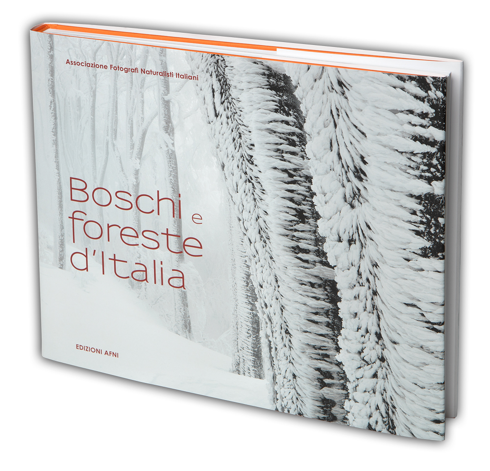 cover_boschi