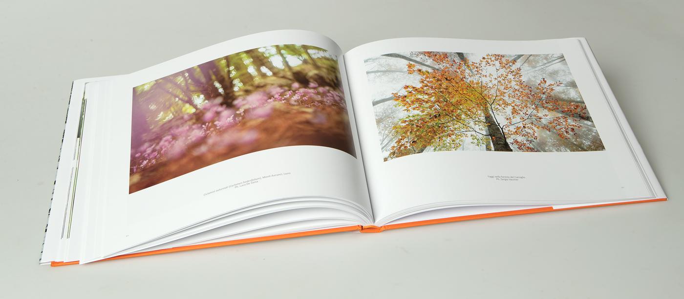 libro_boschi_07