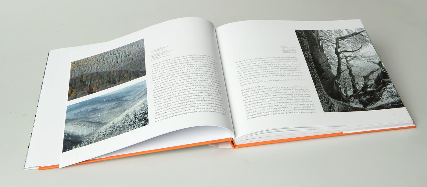 libro_boschi_13