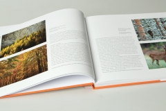 libro_boschi_02