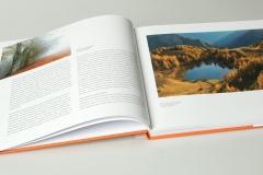 libro_boschi_03