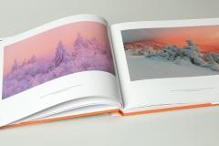libro_boschi_04