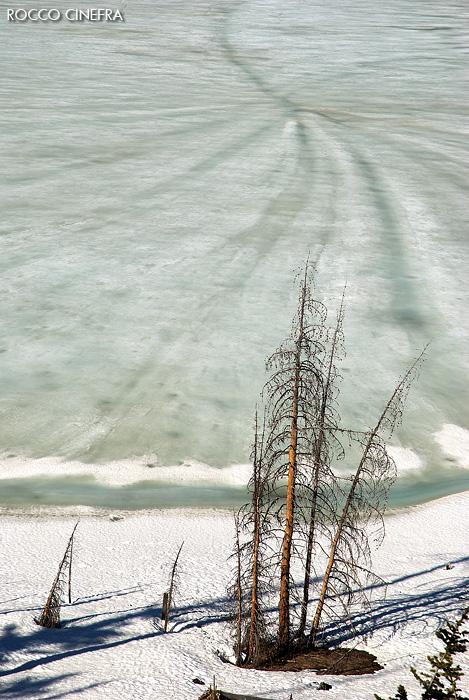08-lake-yellowstone