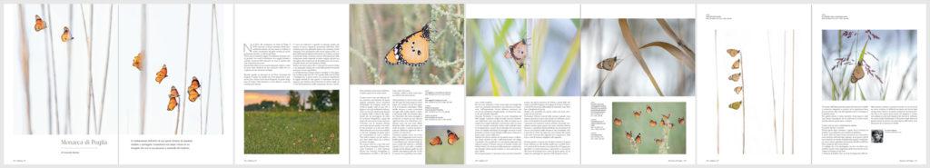 57_05-pagine