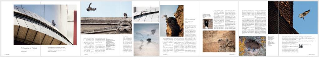 58_04-pagine