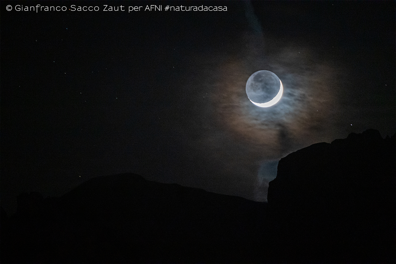 20200326-Sacco-Zaut3