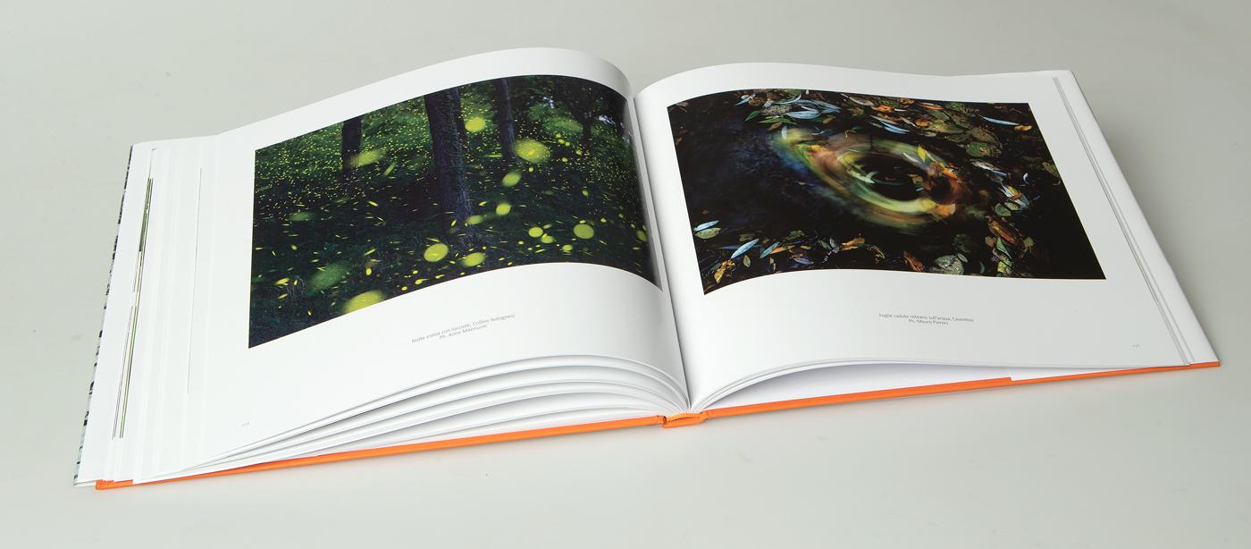 libro_boschi_09