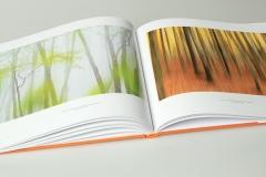 libro_boschi_10